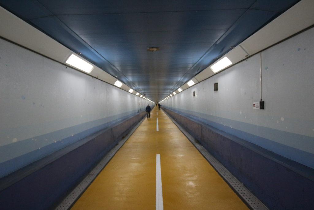 海底トンネルの様子