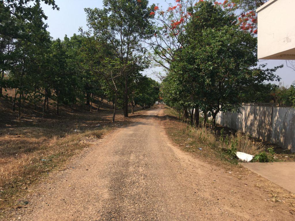 未舗装の道
