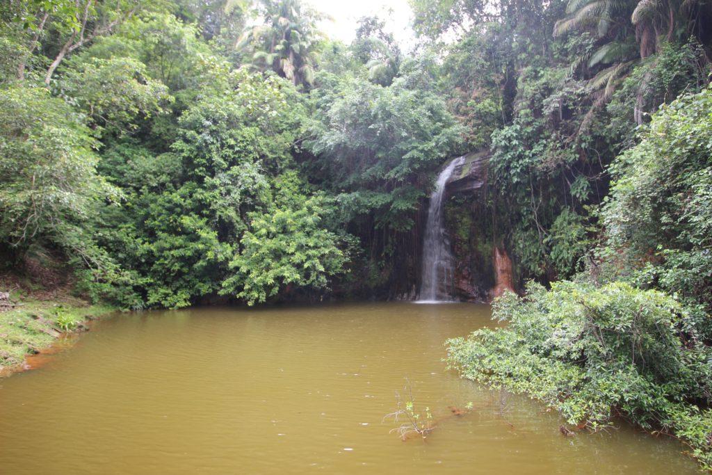 公園の奥にあった小さな滝