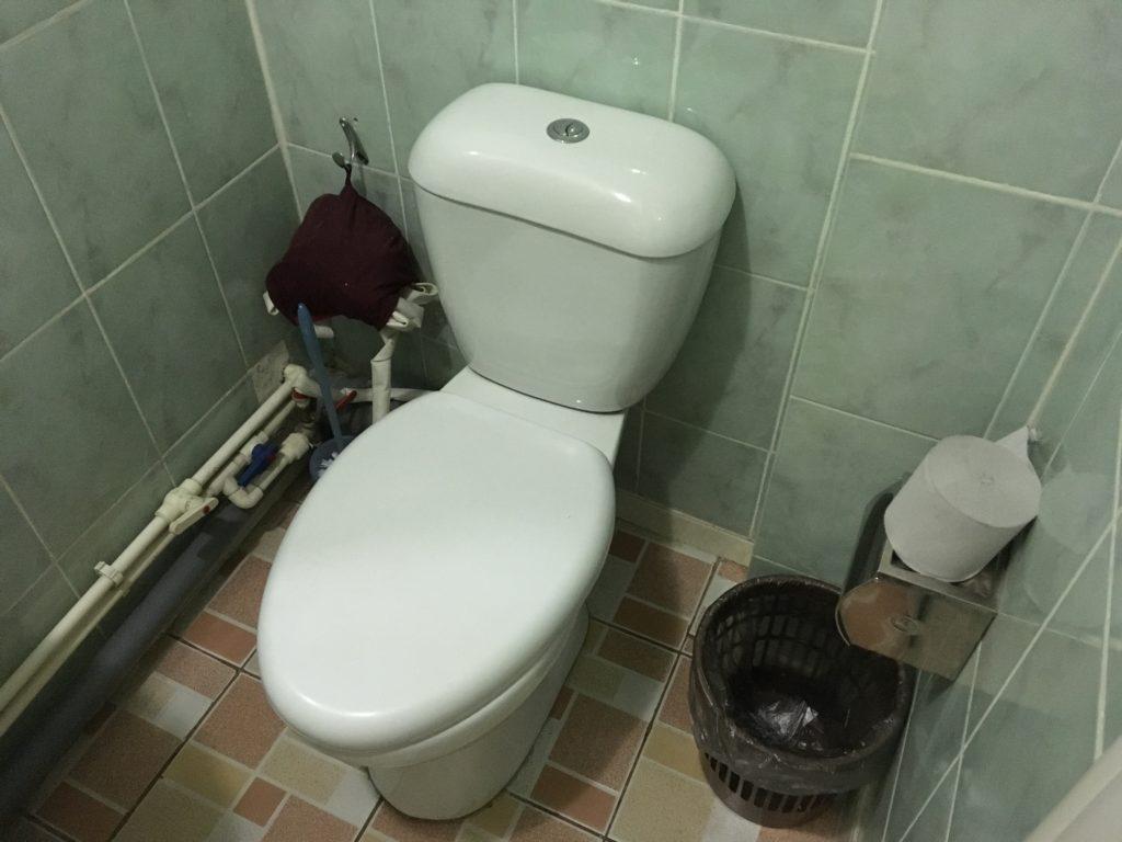 トイレットペーパーは流さない式だと思います