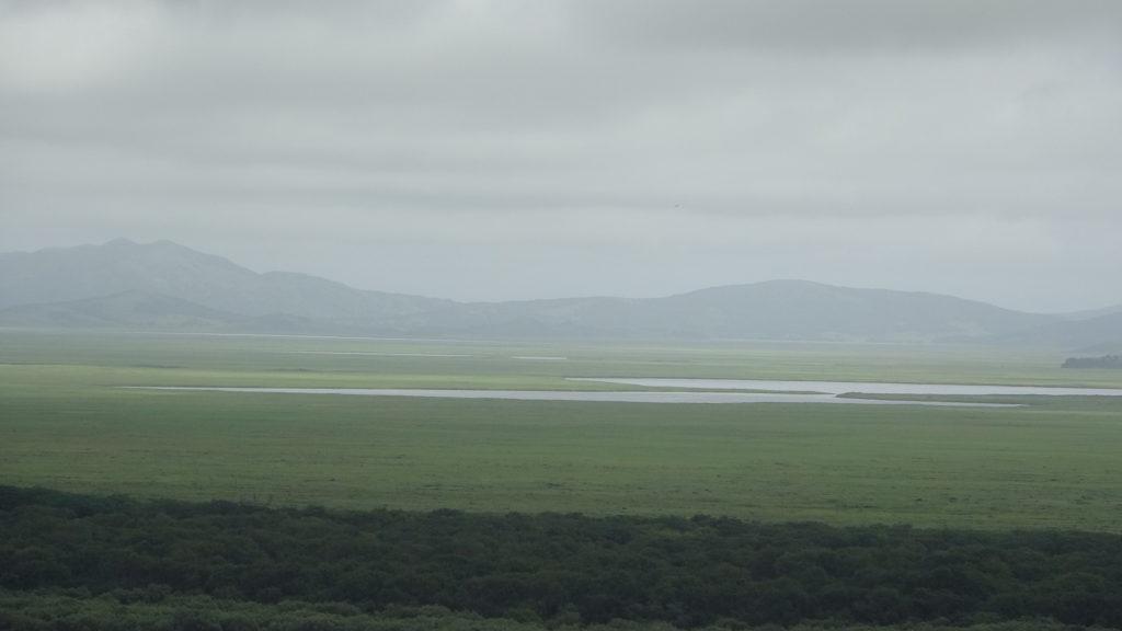 広大なロシアの大地には未開拓の自然が広がっている