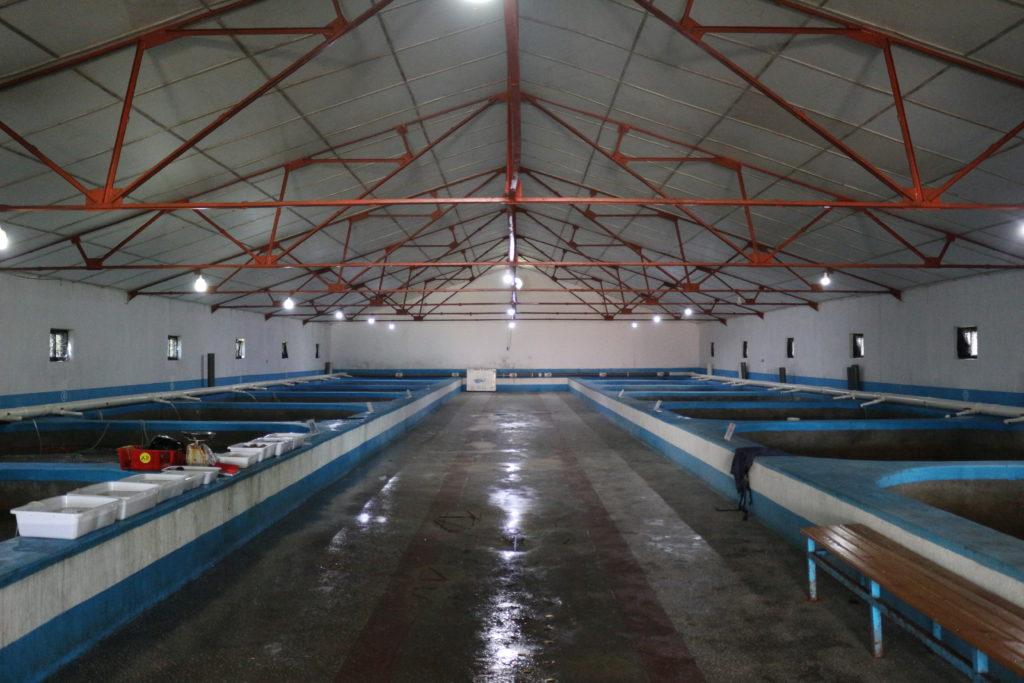 養殖場の内部