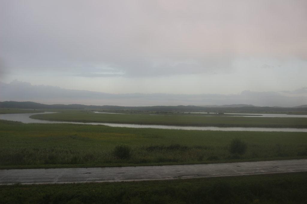 広大な湿原地帯が広がっています
